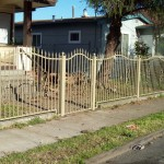 Iron Fencing With Small Door